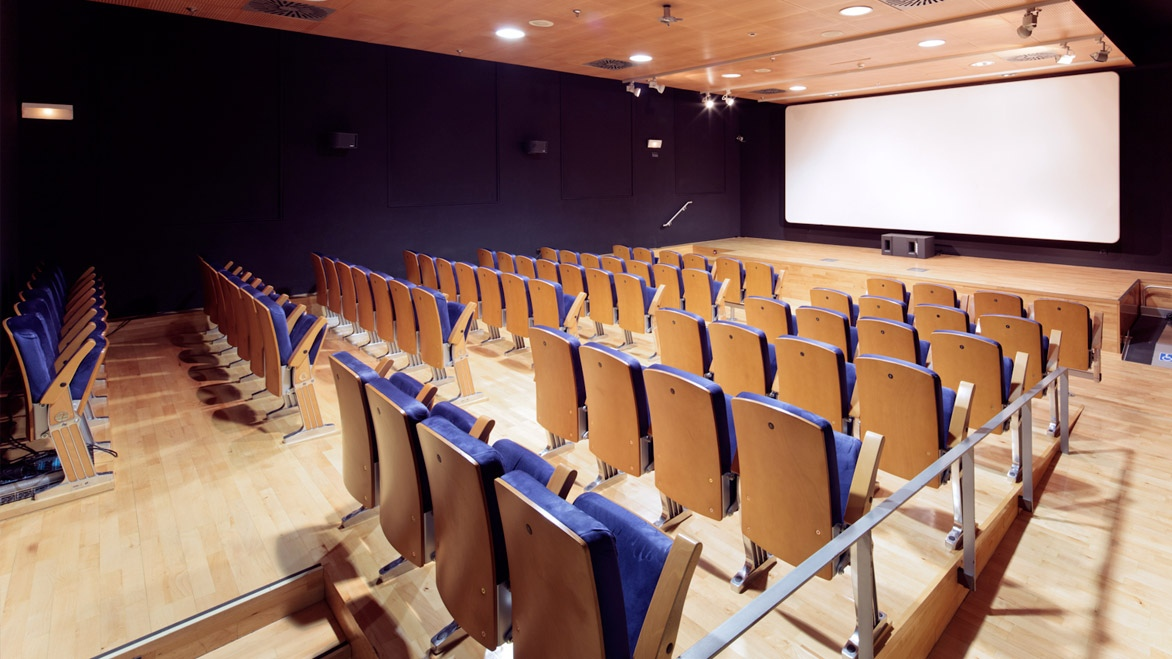 Screening Room / Cinema