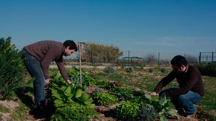 Agroecology: A Viable, Caring, Ethical Strategy