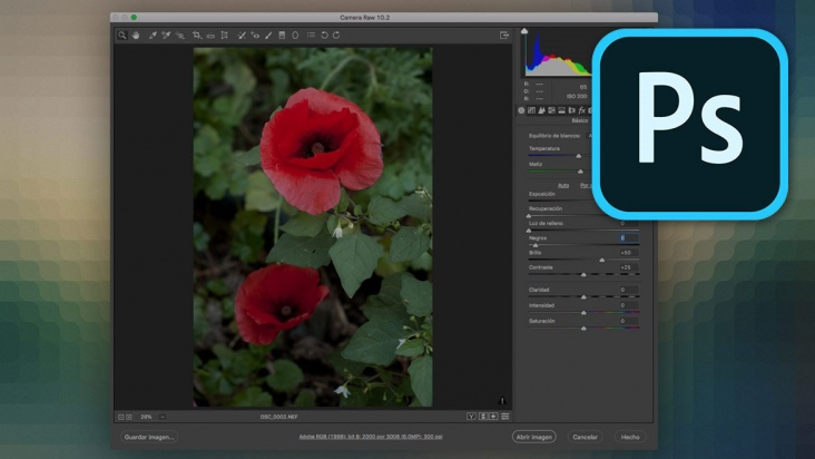 Revelado de negativos digitales raw con Camera Raw - 3h
